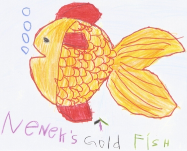 My Grandmother's Gold Fish