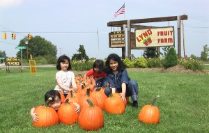 Hugging big pumpkins near the orchard in Ohio