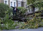 "Theo Harcourt, a 13-year-old student, jumps over a fallen tree as he makes his way to school in Islington, north London October 28, 2013, after strong storm winds and rain battered southern parts of England and Wales early on Monday, forcing flight cancellations, disrupting trains and closing roads and major bridges before the start of rush-hour. Local media dubbed the storm ""St. Jude"", after the patron saint of lost causes who is traditionally celebrated on October 28. REUTERS/Olivia Harris"