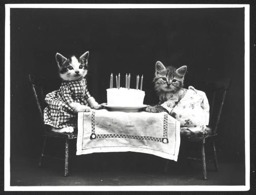 The birthday cake : Photograph shows two kittens wearing dresses at a table with a birthday cake, 1914. (Photography by Harry Whittier Frees/Library of Congress)