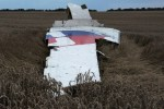 A picture taken on July 17, 2014 shows the wreckages of the Malaysian Air plane carrying 295 people from Amsterdam to Kuala Lumpur after it crashed, near the town of Shaktarsk. Photo / AFP