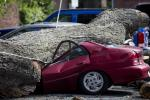 A downed tree lays atop a crushed car Wednesday, July 9, 2014, in Philadelphia. About 228,000 homes and businesses across Pennsylvania remain without power after severe thunderstorms raced across the state. (AP Photo/Matt Rourke)