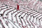 Daron Jones, University of Wisconsin's associate director of events and operations, trudges through the snow-covered west stands before an NCAA college football game between Wisconsin and Northwestern at Camp Randall Stadium in Madison, Wis., Saturday, Nov. 21, 2015. The first significant snowstorm of the season blanketed some parts of the Midwest with more than a foot of snow and more was on the way Saturday, creating hazardous travel conditions and flight delays. (Michael P. King/Wisconsin State Journal via AP)