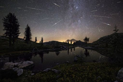 Flash Point The Perseid Meteor Shower shoots across the sky in the early hours. This composite image features roughly 65 meteors captured by the photographer between 12:30am and 4:30am. (Brad Goldpaint)