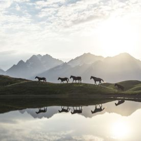 """""""Morning at Koruldi Lakes in Georgia (country)."""" (Witold Ziomek / National Geographic Nature Photographer of the Year contest)"""