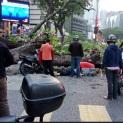 Gambar ihsan Malaysian Digest.